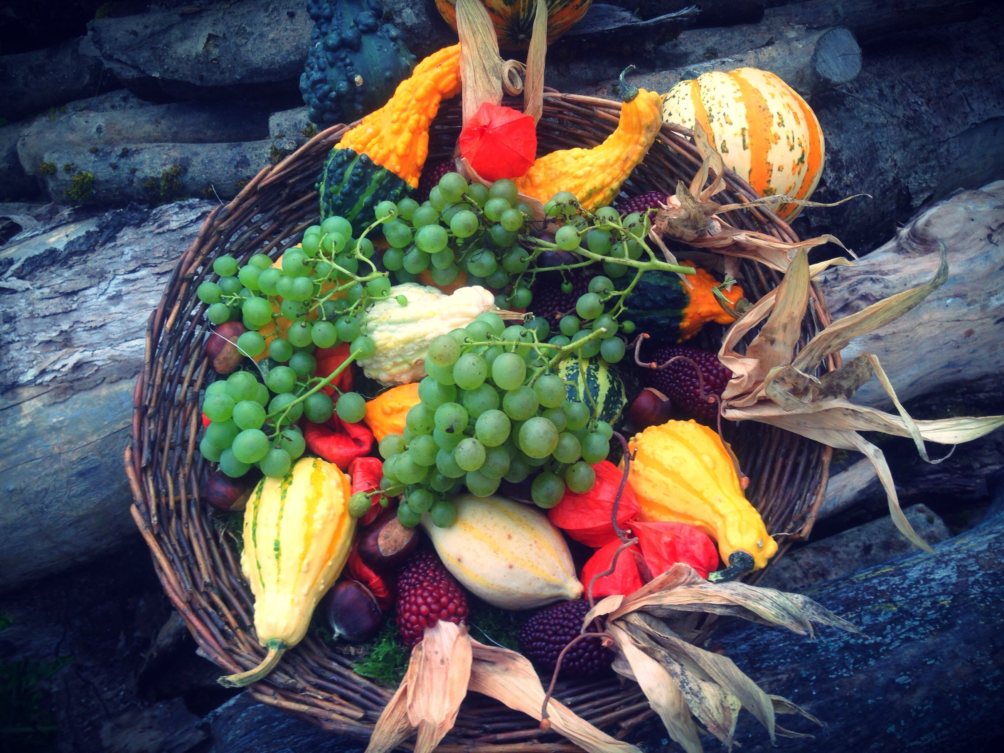 abundance-agriculture-autumn-decoration-265562